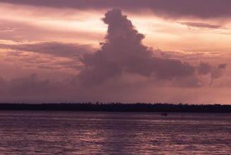 アマゾン 川 国